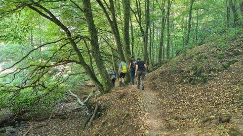 Die Wandergruppe unterwegs auf dem Brunnenpfad